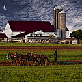 Working The Fields by Susan Candelario