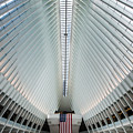 World Trade Center Station by Federico Cella
