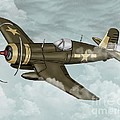 World War 2 Airplane by Karen Sheltrown