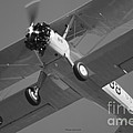 Stearman Trainer Bi Plane Black And White by Thomas Woolworth