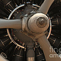 World War II Airplene Engine by M K Miller