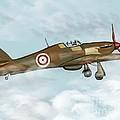 world war II plane by Karen Sheltrown
