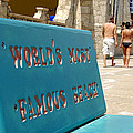 Worlds Most Famous Beach Bench by David Lee Thompson