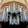 Worms Cathedral Organ by Jenny Setchell