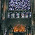 Worship In Notre Dame by Elvis Vaughn