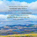 Worthy Are You Jesus by David  Norman