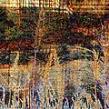 Woven Harvest by Kiki Art