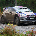 Wrc In The Woods by Graham Parry