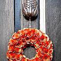 Wreath 31 by William Krumpelman
