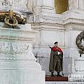 Wreath And Guard At The Tomb Of The Unknown Soldier by Jason O Watson