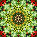 Wreath Kaleidoscope by Bill Barber