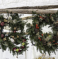 Wreaths For Sale Colonial Williamsburg by Teresa Mucha