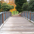 Wrights Park Bridge by Tikvah's Hope
