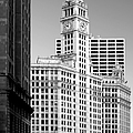 Wrigley Building - A Chicago Original by Christine Till