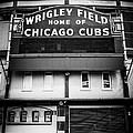 Wrigley Field Chicago Cubs Sign In Black And White by Paul Velgos