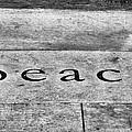 Written In Stone by Christi Kraft