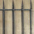 Wrought Iron Gate by Brenda Bryant