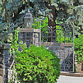 Wrought Iron Gate by Donald S Hall