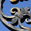 Wrought Iron by J Havnen