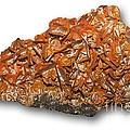Wulfenite Mineral by Dirk Wiersma