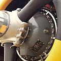 Ww II Airplane Engine by Thomas Woolworth