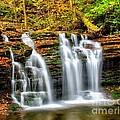 Wyandot Falls Ricketts Glen by Nick Zelinsky