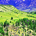 Wyoming Hillside by Lisa Holland-Gillem