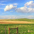 Wyoming Landscape by Lanita Williams