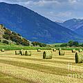 Wyoming Mountain Hay Farm by Gary Whitton