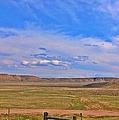 Wyoming Spring by Sarah Jane Thompson