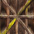 X Marks The Spot by Guy Shultz