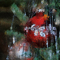 Xmas Red Ornament Photo Art 03 by Thomas Woolworth