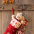 Xmas Stockings by Amanda Elwell