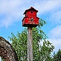 Yachats Red Birdhouse by Image Takers Photography LLC