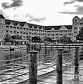 Yacht And Beach Club After The Rain In Black And White Walt Disney World by Thomas Woolworth