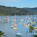 Yachts In A Quiet Estuary by David Hill
