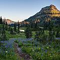 Yakima Peak At Sunrise by Mike Reid