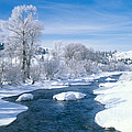 Yampa River Colorado by James Steinberg
