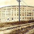 Yankee Stadium 1923 by Benjamin Yeager
