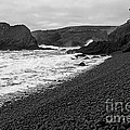 Yaquina Head In Bw by Nick  Boren