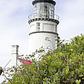 Haceta Head Lighthouse 7 by Cathy Anderson