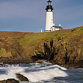 Yaquina Head Lighthouse by Brian Jannsen