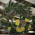 Yarrow And Lotus Wreath Squared by Teresa Mucha
