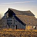 Yarrow Ave Barn 2 by Bonfire Photography