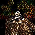 Yawning Panda  by Mariola Bitner