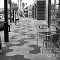 Ybor City Sidewalk - Black And White by Carol Groenen