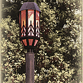 Ye Olde Street Lamp by John Haldane