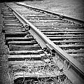 Ye Olde Tracks by Michele Nelson