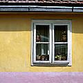 Yellow And Pink Facade. Belgrade. Serbia by Juan Carlos Ferro Duque