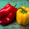 Yellow And Red Bell Pepper by Garry Gay